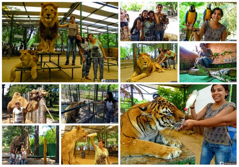Zoo Luján, na Argentina - D&D Mundo Afora completa 3 anos