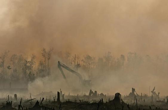 Faktor Kebakaran Hutan di Asean