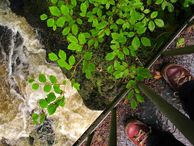 image of a bridge above a river, running water, green leaves in the corner and a pear of red shoes on the bridge