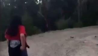 Pengalaman Ngeri Bertemu dengan Makhluk Legenda Sasquatch