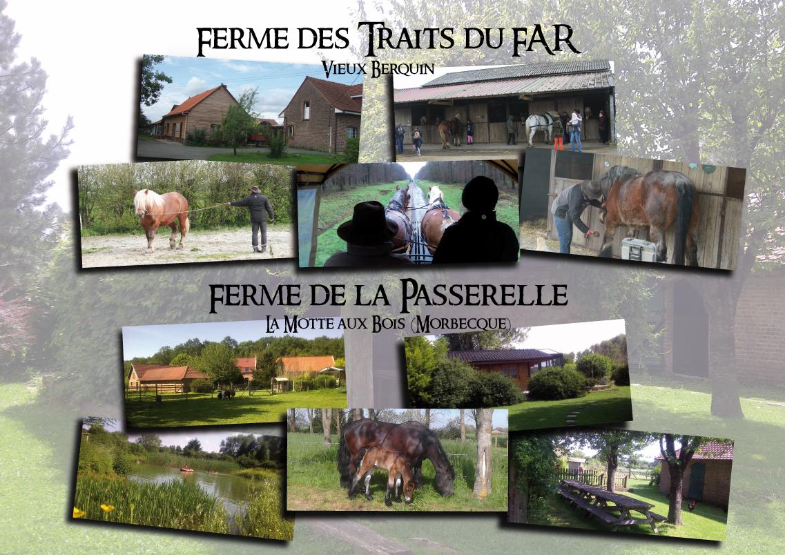 https://danslepasduncheval.blogspot.fr/p/les-tarifs-exemples.html