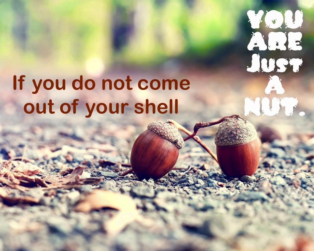 Famous Quotes, Motivational Quotes 2014, Daily thoughts