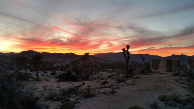 Ryan Ranch in Joshua Tree National Park