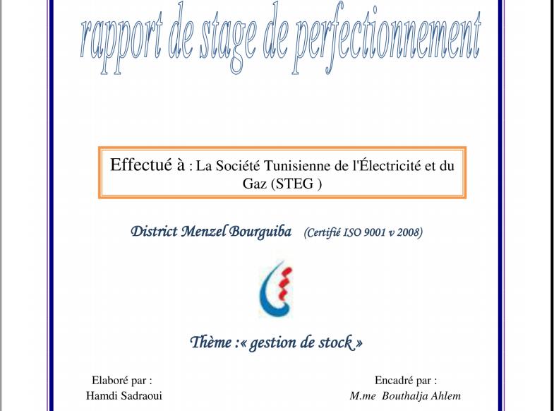 Pdf rapport de stage pfe chez steg tunisie stagepfe - Page de garde rapport de stage open office ...