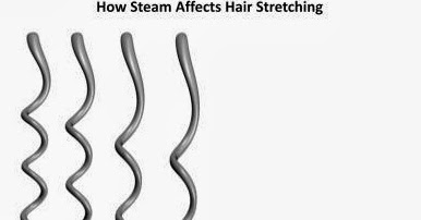 THE NATURAL HAVEN: Are steamers really worth buying?