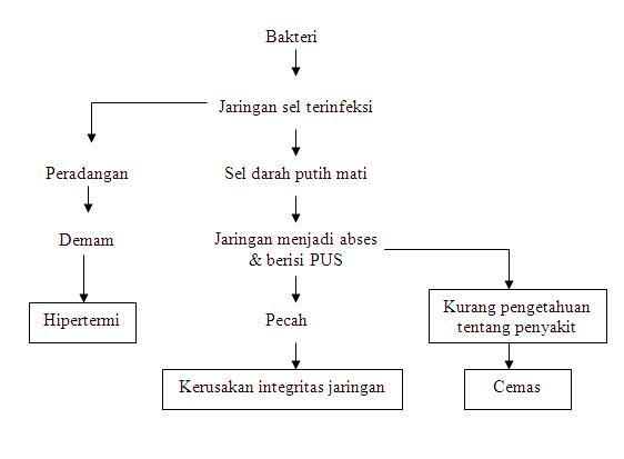 diet-untuk-anak.pdf