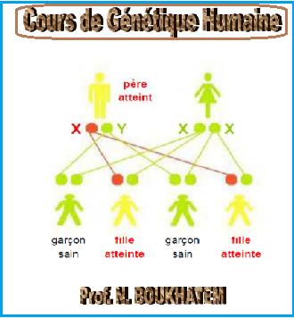 Cours de génétique humaine