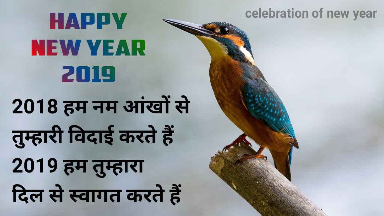 2018-vidai-shayari-image-in-hindi