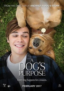 Xem Phim Mục Đích Sống Của Một Chú Chó - A Dog's Purpose
