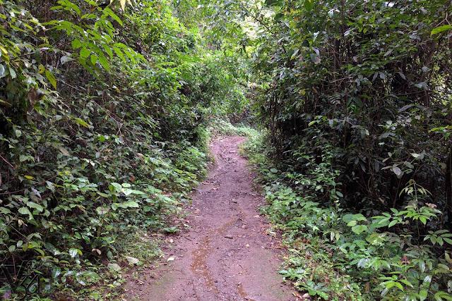 Yana trek trail