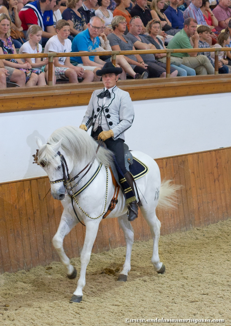 Andalusian kuninkaallinen hevoskoulu Jerez_Andalusian Royal Equestrian School Jerez_5
