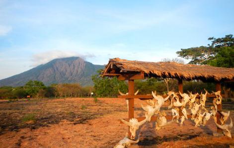 tempat wisata taman nasional baluran situbondo
