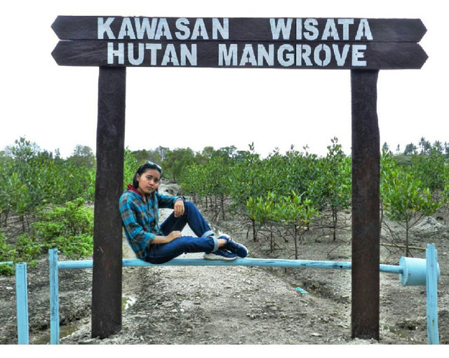 pintu masuk hutan mangrove