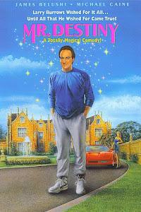 Mr. Destiny Poster