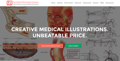 Medical Illustrations Online at Unbeatable Price and Quality