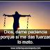 Dios dame paciencia porque si me das fuerzas lo mato