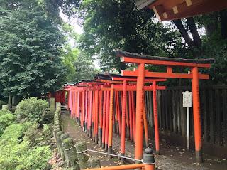 Tokyo torii gates