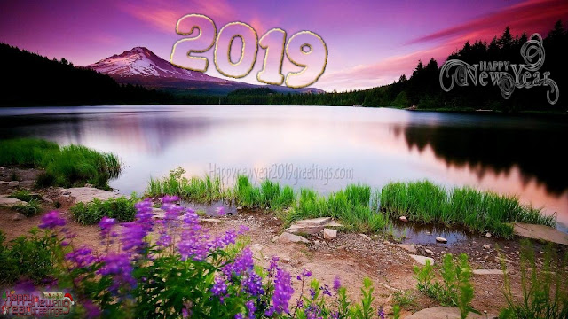 Happy New Year 2019 HD Nature Background Wallpapers Download