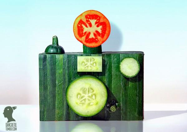 Cámara fotográfica hecha con distintos vegetales