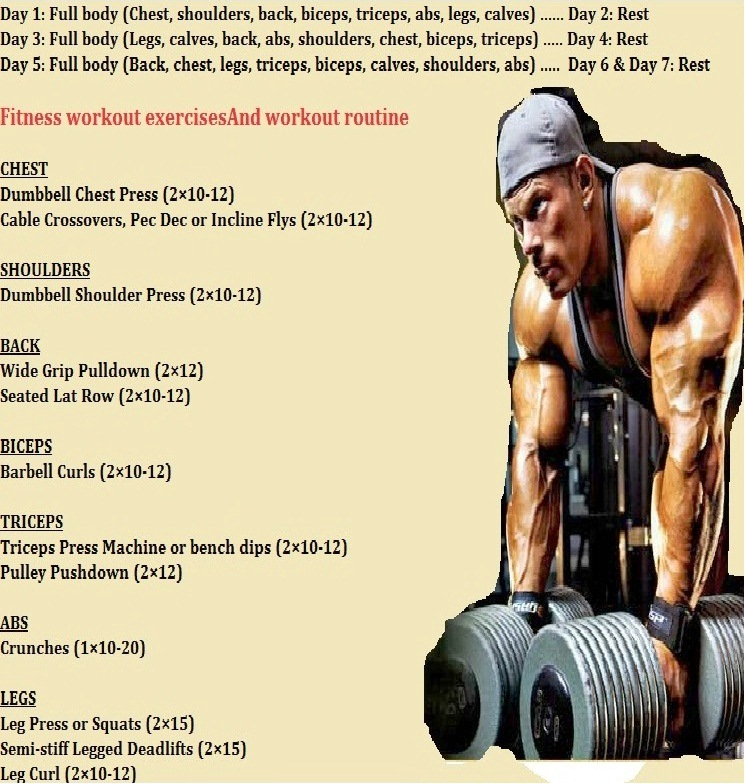 Weekly Gym Workout Schedule Gym Workout Chart for Beginner