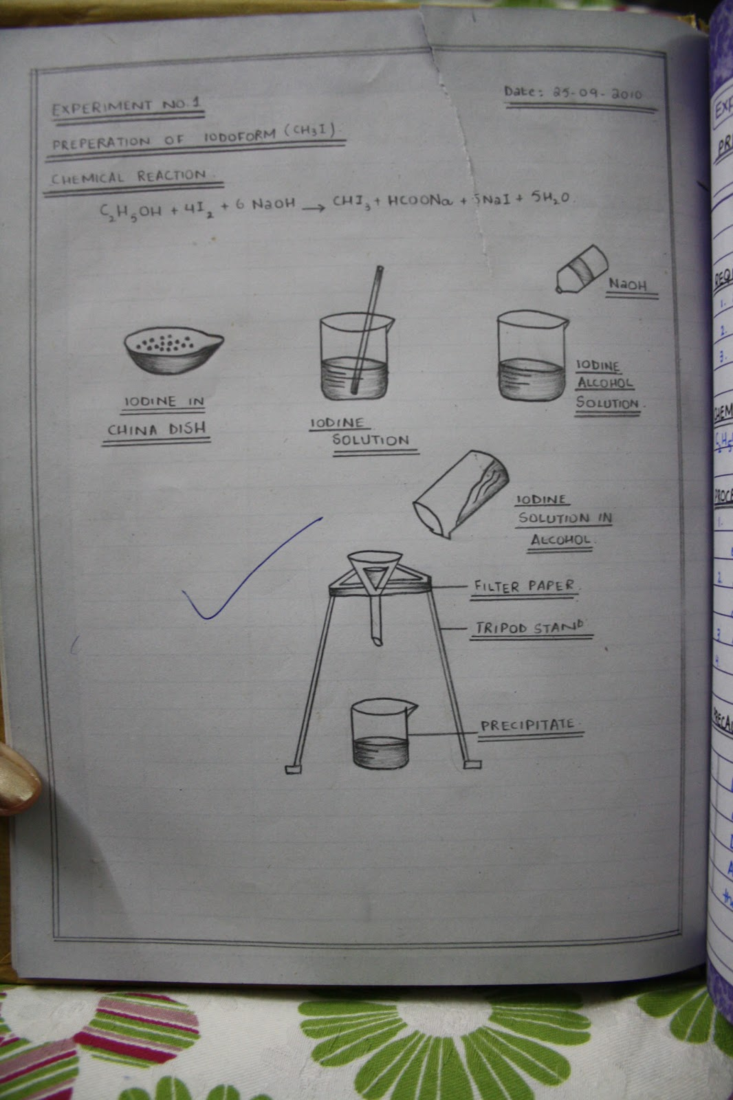 Cbse Grade 12 Chemistry Lab Manual