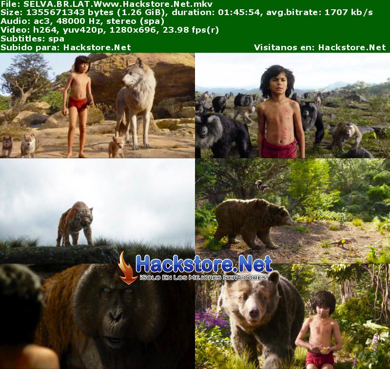 Capturas de El Libro de la Selva (2016) Blu-Ray RIP HD Latino