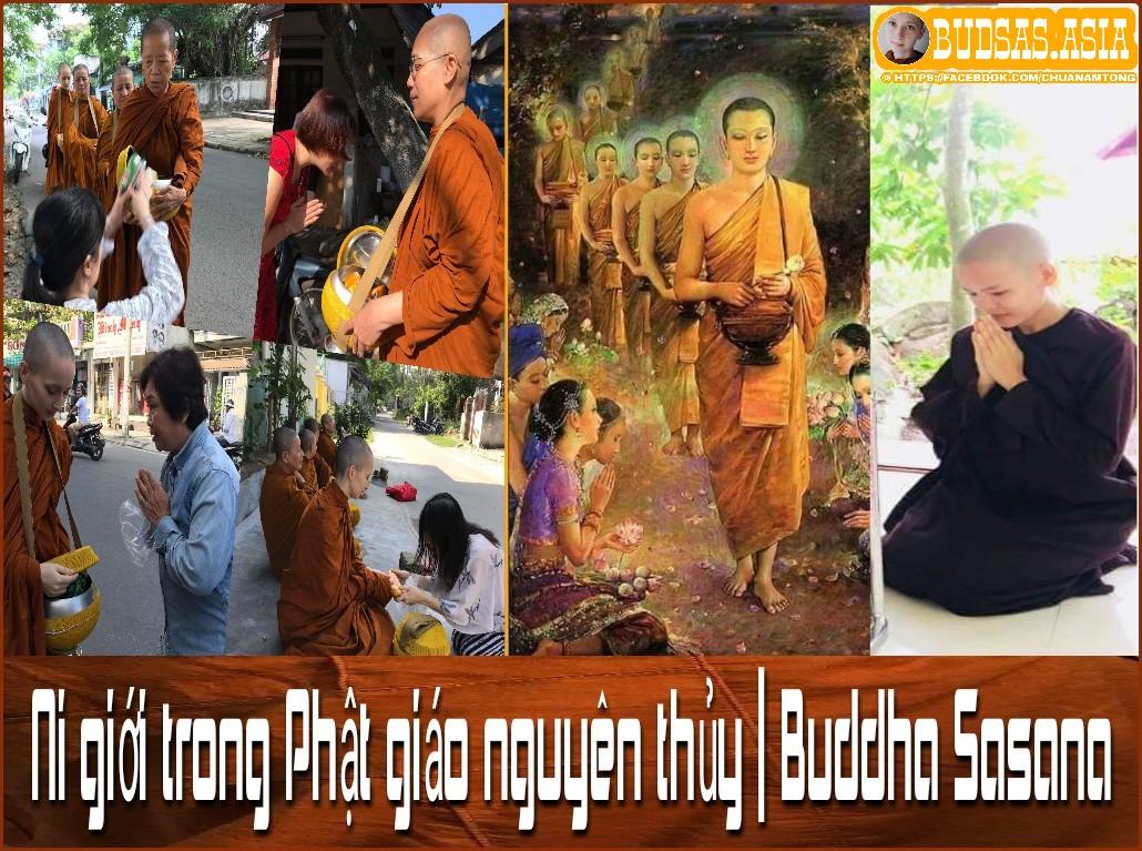 WWW.BUDSAS.ASIA - Ni giới trong Phật giáo nguyên thủy | Buddha Sasana