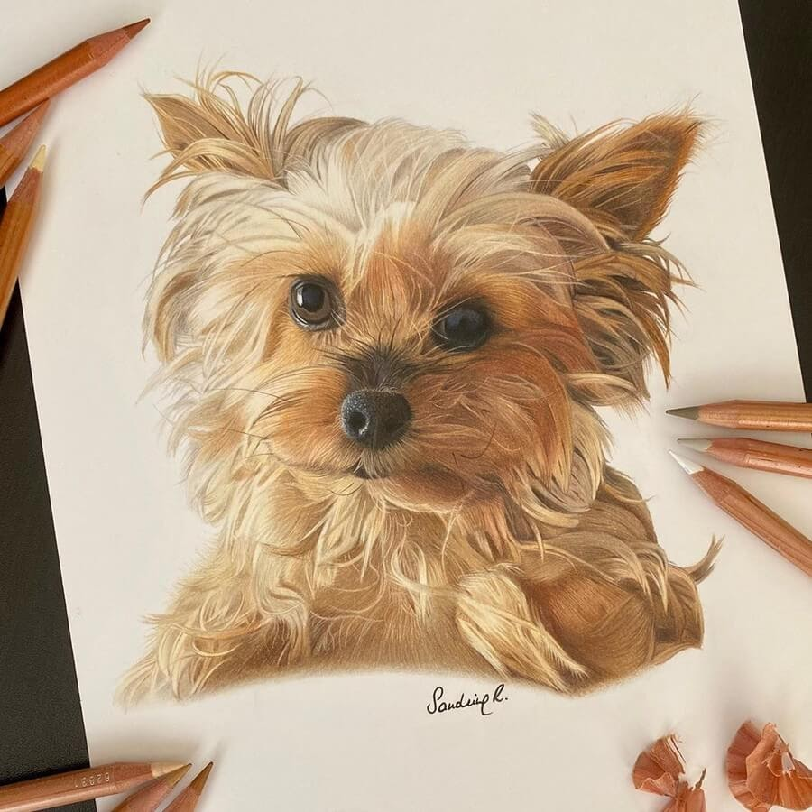 02-Fluffy-puppy-Sandrine-R-www-designstack-co