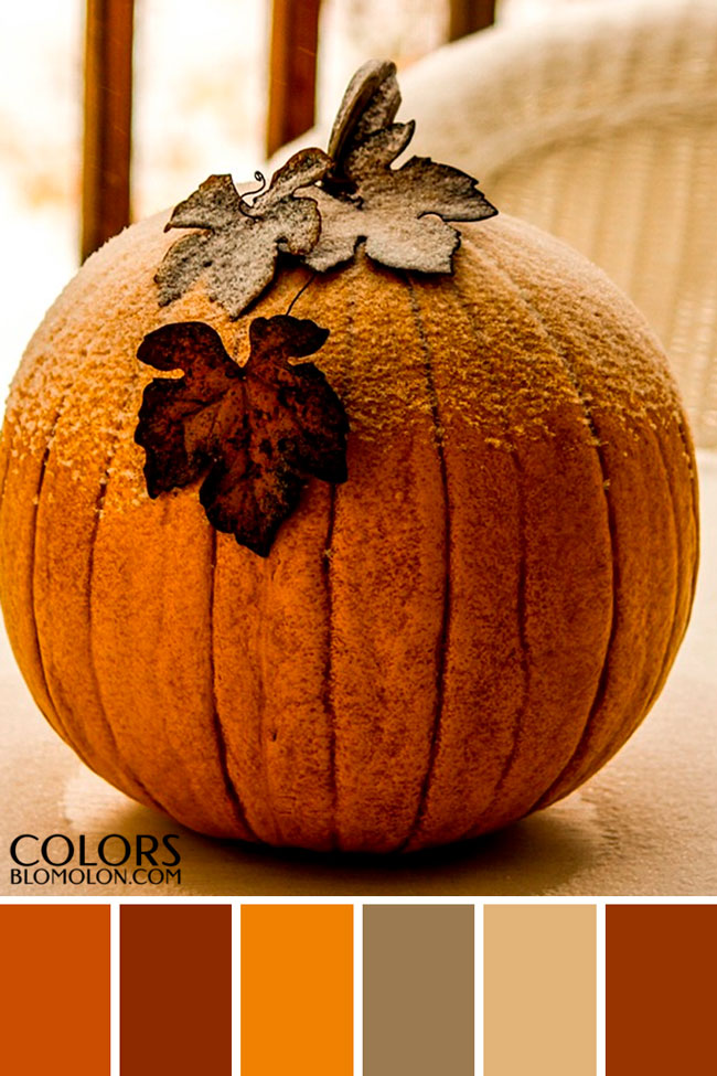 paletas_de_colores_variedad_de_temporada_5