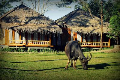 Hotel Murah Di Samarang Garut Terbaru 2018