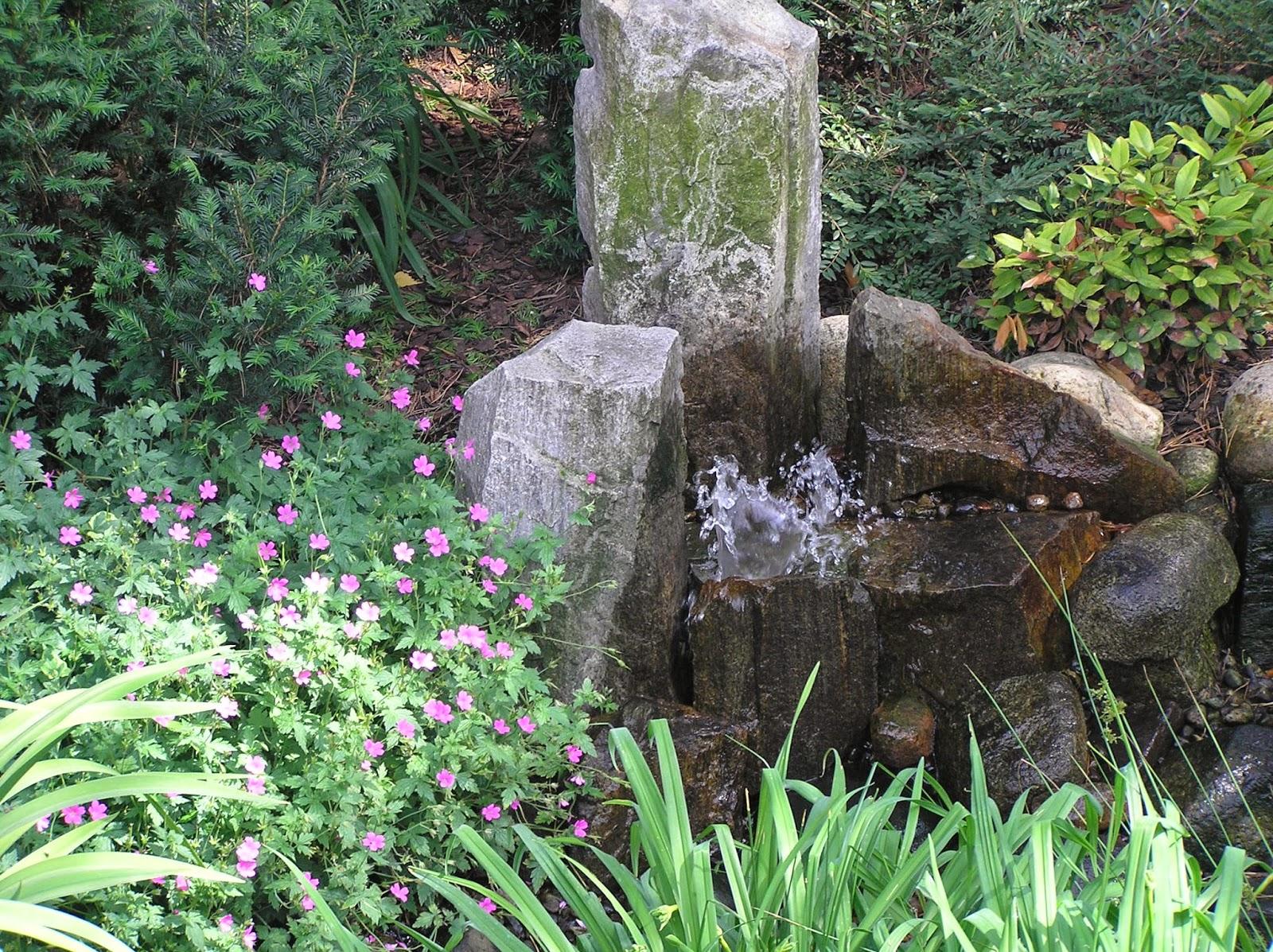 woda i kamienie