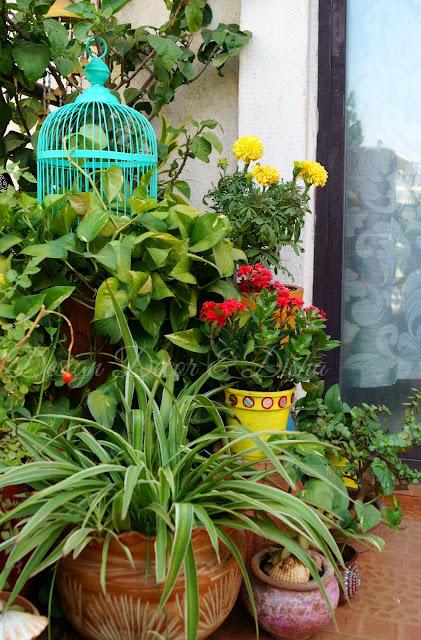 Bird Cage In Garden