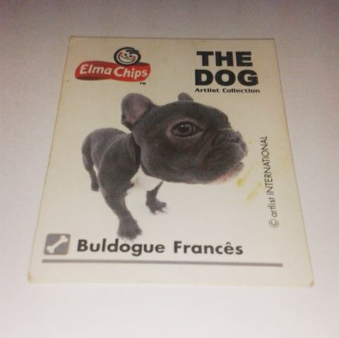 Buldogue Frances