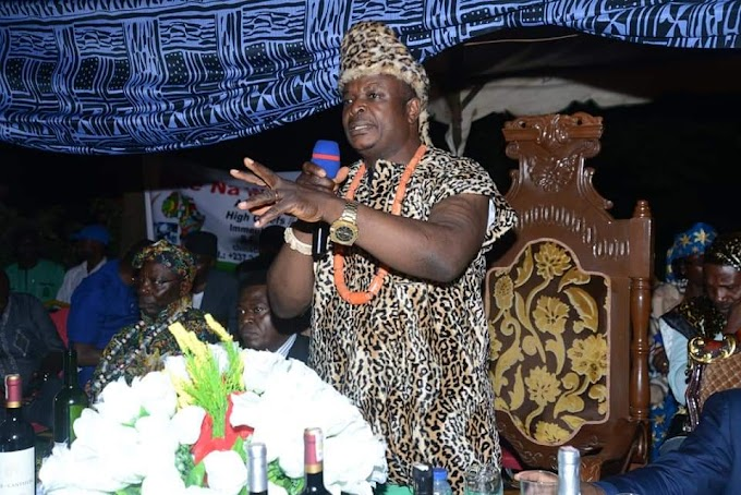 Who is Paramount Chief Nnamdi Nwosu?