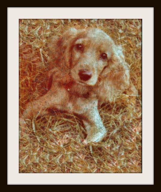 Charlie, 1972