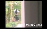Clip: Em gái học sinh cấp 2 bị quay lén lúc đi tè bên vệ đường^^