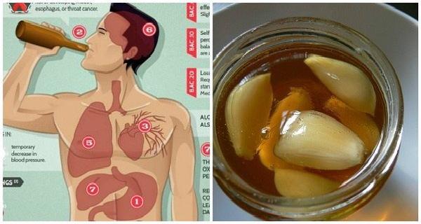 Avoir l'ail et le miel sur l'estomac vide. Après une semaine, votre corps sera changé ...