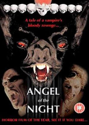 Angel Of The Night 1998 UNRATED Dual Audio Hindi Movie Download