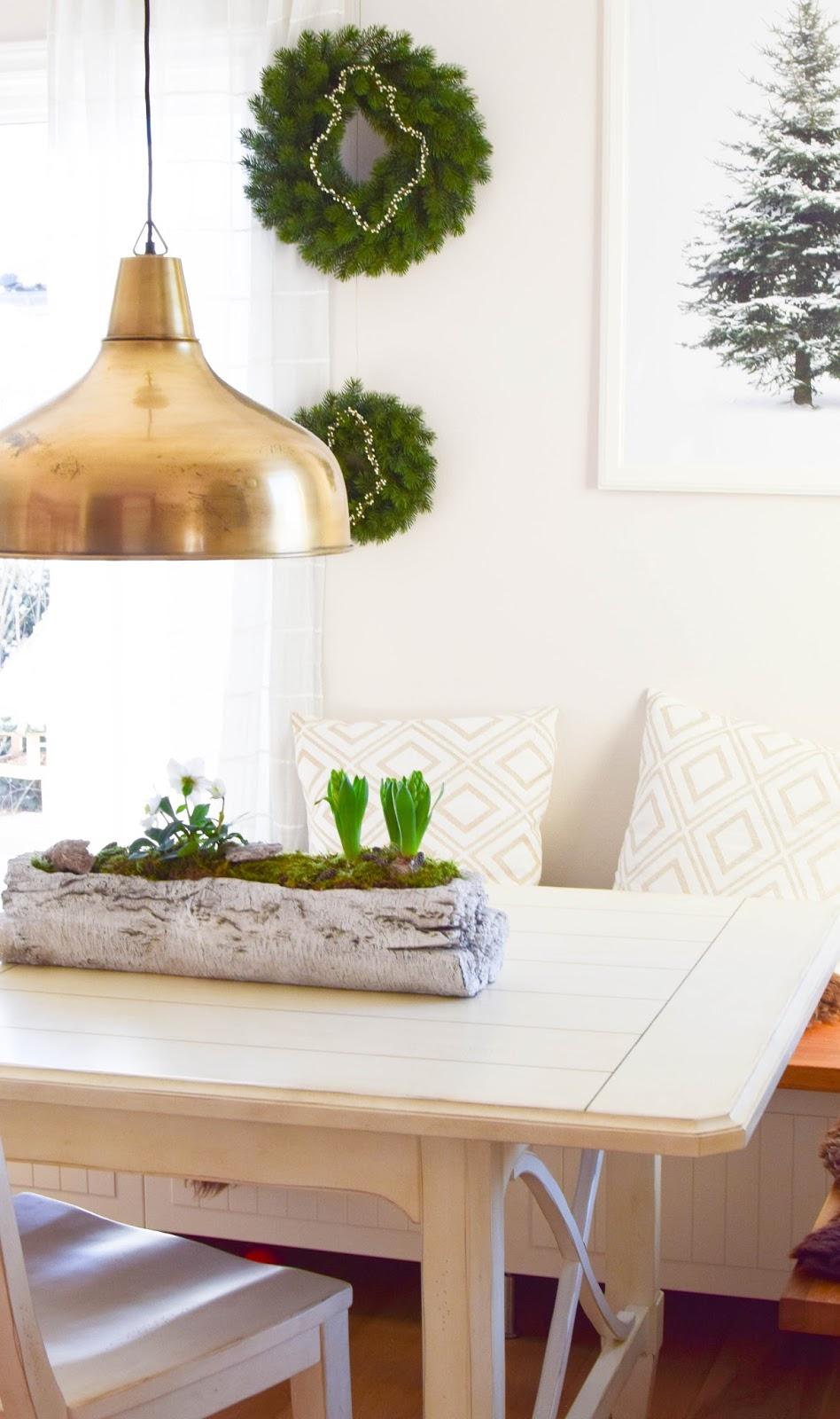 DIY Deko Schale für den Frühling mit Christrose, Hyazinthe und Moos. Kreativ Selbermachen Basteln mit Naturmaterialien. Naturdeko einfach, schnell und schön fürs Frühjahr