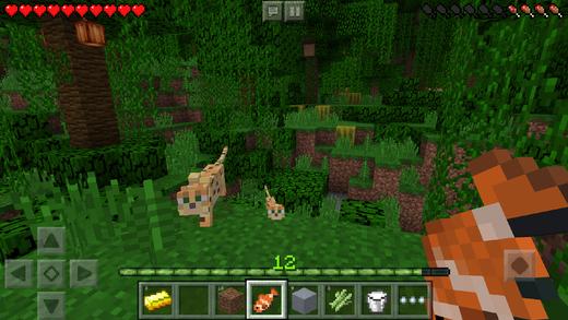 Minecraft Pocket Edition'a Güncelleme Geldi