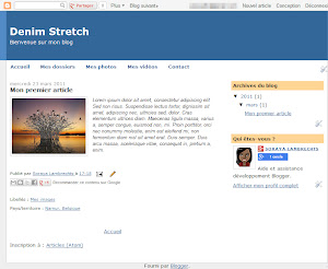 Denim Stretch Theme