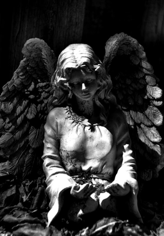 Angel Statue Hd Wallpaper | Joss Wallpapers