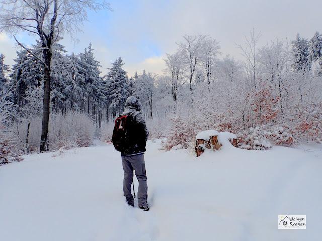 Kalenica zima