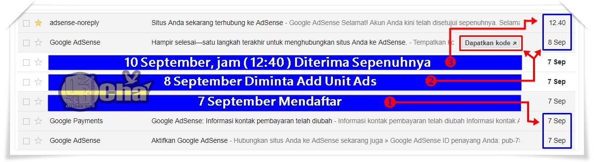 Senang Sih 4 Hari Daftar Google Adsense 2 Akun Langsung Full Approved, Tapi Kok Ada Yang Aneh ya ???