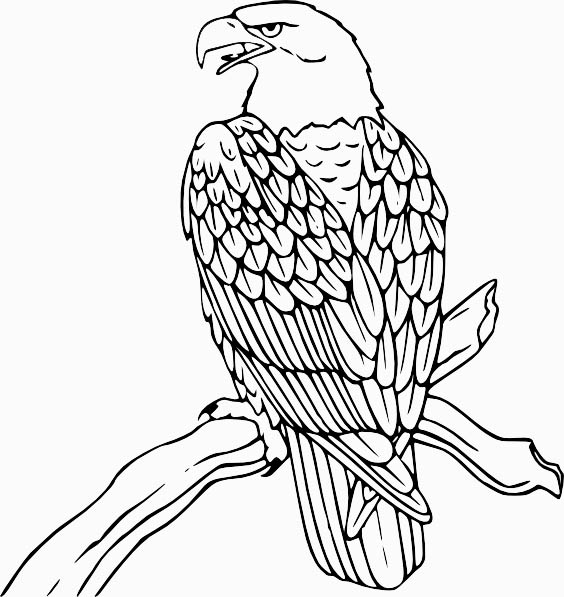 little one flower coloring page