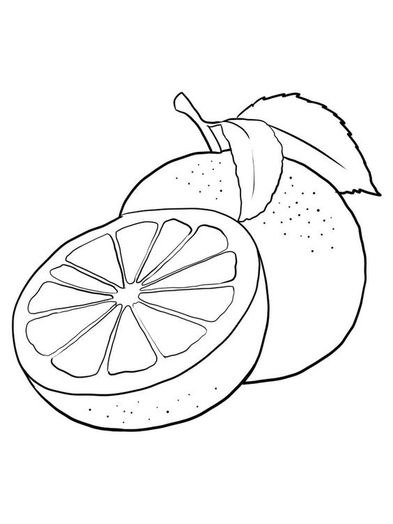 Tranh tô màu quả cam