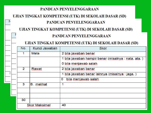 Juknis Ujian Tingkat Kompetensi (UTK) di SD Kurikulum 2013