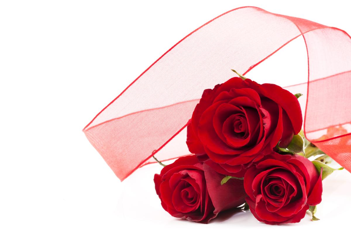 604701ce38511 BANCO DE IMÁGENES  20 imágenes de amor y amistad para el Día de San ...