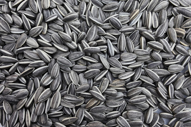 Sunflower Seeds vitamin E best for eye diseases