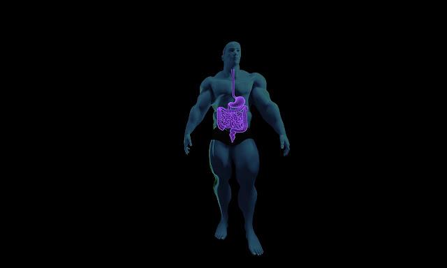 القولون، القولون العصبي، اعراض القولون،  اسباب القولون، علاج القولون، Colon, IBS, Symptoms of colon, Causes of colon, Colon treatment,
